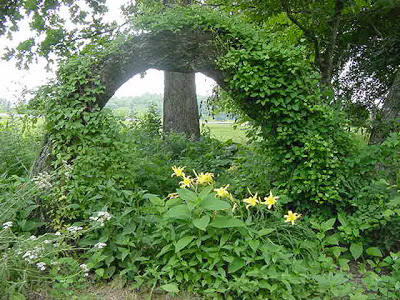 green-arch
